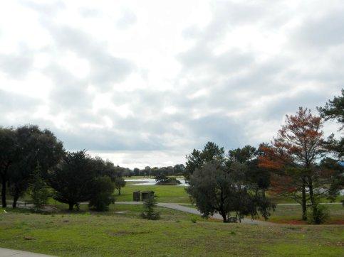 Miller Knox Park