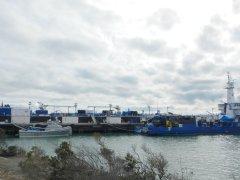 Pt Potrero shipyard