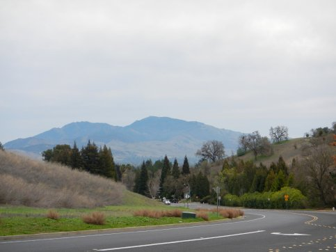 view of Mt Diablo from Morello Ave