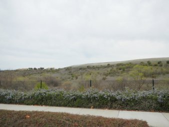Gale Ranch landscape