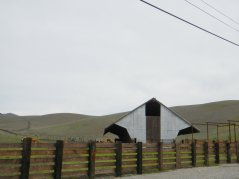 Highland Rd-cattle barn