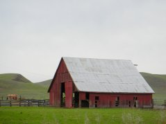 Manning Rd-red barn