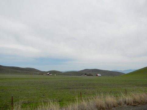 Carneal Rd-ranches
