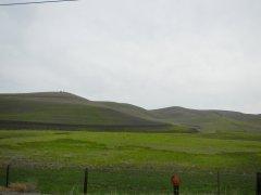 Collier Canyon Rd-green meadows