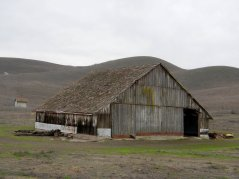 Collier Canyon Rd-beautiful barn