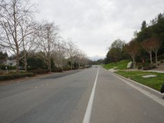 Sycamore Valley Rd-San Ramon
