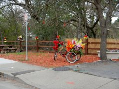 Danville Blvd-flower cart