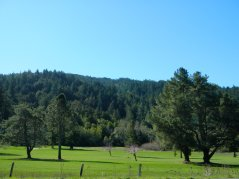San Geronimo Golf Course