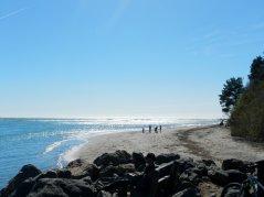 Bolinas Beach