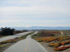 Monterey Peninsula Coastal Rec Trail