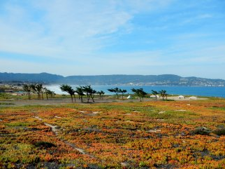 view of Monterey Bay