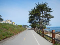 Rec Trail-Pacific Grove