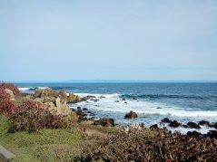 rugged shore