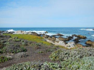gorgeous ocean scene