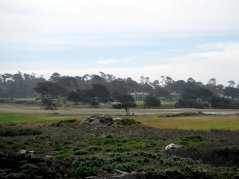 view of Del Monte Forest
