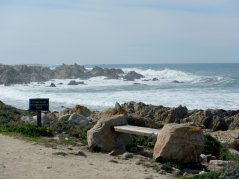 pounding waves