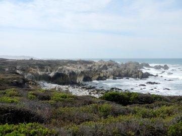 craggy shores