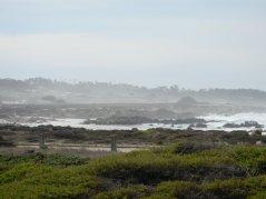 misty ocean views