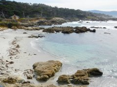 Cypress Point area