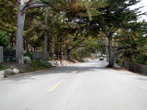 17 Mile DR-Pebble Beach