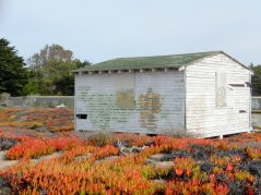 old structure-Fort Ord