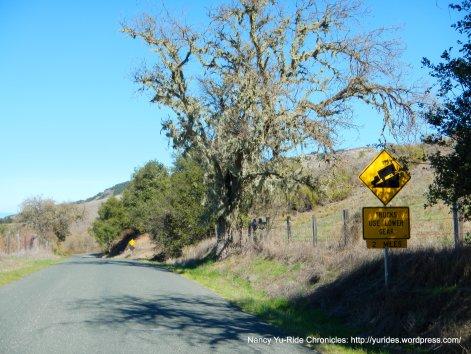 descend Robinson Canyon Rd