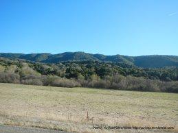 valley views-open meadow