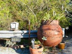 outdoor pots