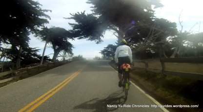 climb up 17 Mile Dr to Cypress Point
