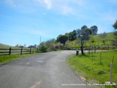 Cantelow Rd-steep to switchback