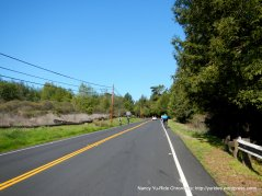 Grizzly Peak Blvd-to