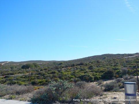 Fort Ord landscape