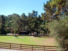 open ranch home
