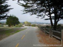 Monterey Rec Trail