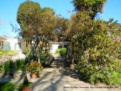 Larkin House garden
