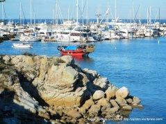 harbor views