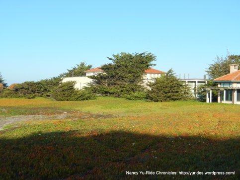 Hopkins Marine Station