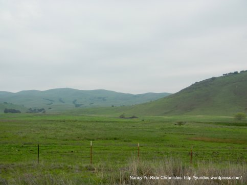 gorgeous rolling green hills