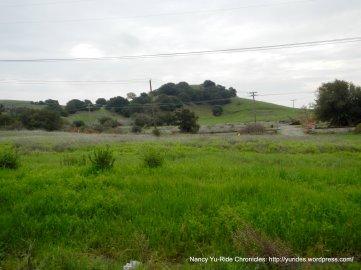 top of Cordelia Rd-landscape