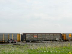 RR boxcars-Goodyear Rd