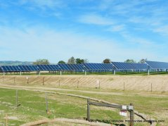 solar farm & vineyard