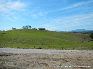 gorgeous green hills