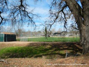 Atascadero sports field