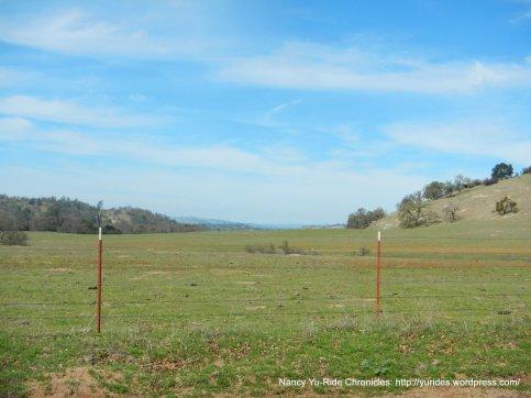 Miller Flat meadows