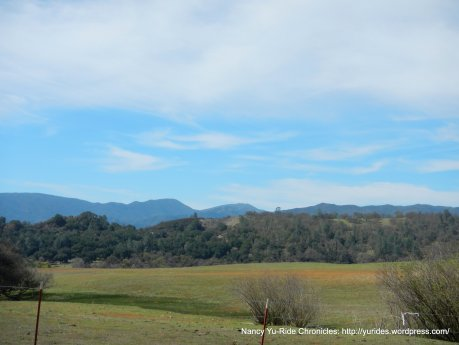 forests & mountains-Santa Lucia Range