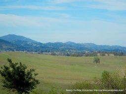 forests & mountains-Santa Lucia Range