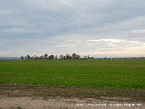 open flat lands