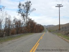 Indian Valley Rd-bumpy section