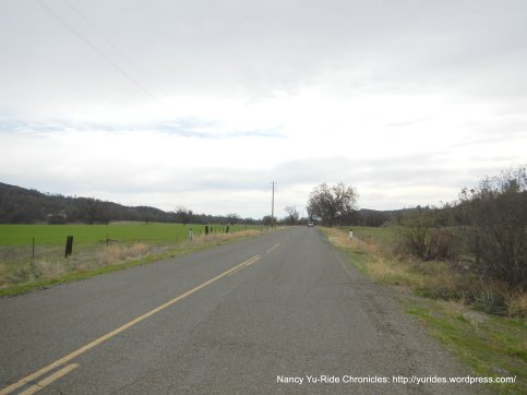 Vineyard Canyon Rd-San Andreas Fault