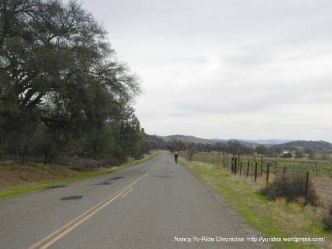 Vineyard Canyon-Pacific Plate San Andreas Fault